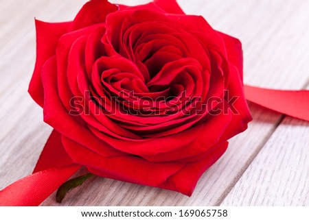 Bouquet of beautiful fresh red roses with a coiled ribbon border isolated on white with plenty of copyspace for your loving anniversary or Valentines message - stock photo