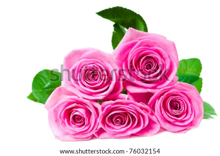 bouquet of beautiful pink roses on white