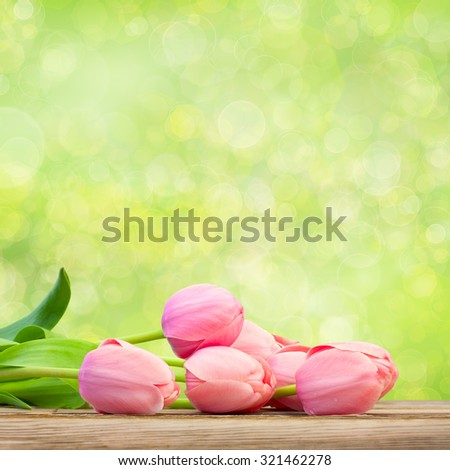 Bouquet of  Beautiful  Pink Tulips on green defocused holiday background, big size - stock photo