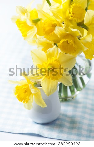 Bouquet of beautiful yellow daffodils in vase