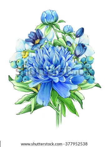 Bouquet of blue flowers isolated on white background. Watercolor hand drawn illustration peonies. Victorian bouquet. Elegant watercolor flowers. Classic greeting card, invitation - stock photo