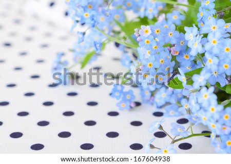bouquet of blue forget-me-not on white fabric in black polka dot - stock photo