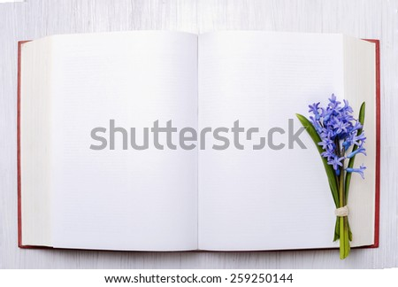 bouquet of blue hyacinths on the open book - stock photo