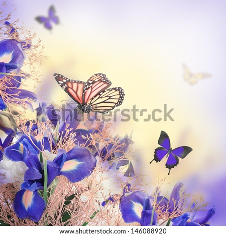 Bouquet of blue irises, white flowers and butterfly - stock photo