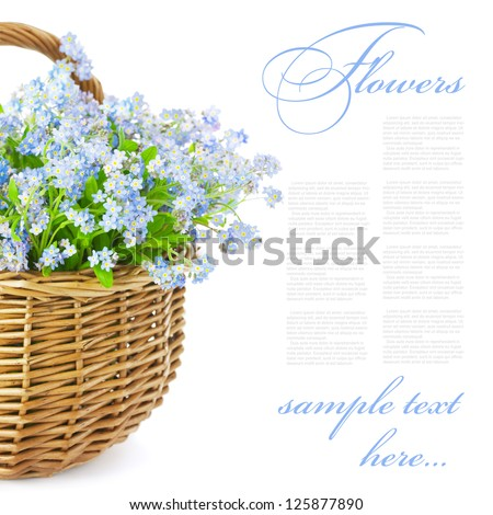 Bouquet of blue spring flowers in basket isolated on white background / Gift with love - stock photo