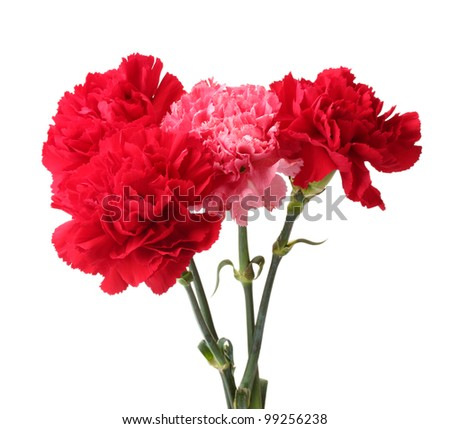 Bouquet of carnations in a glass isolated on white