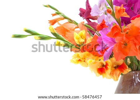 bouquet of colored gladioli isolated on white - stock photo