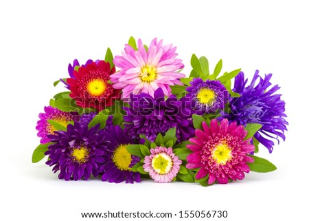 Bouquet of colorful asters flowers on white background - stock photo