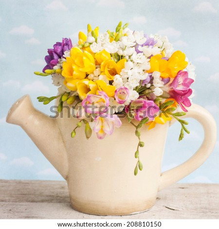 Bouquet of colorful freesia flowers