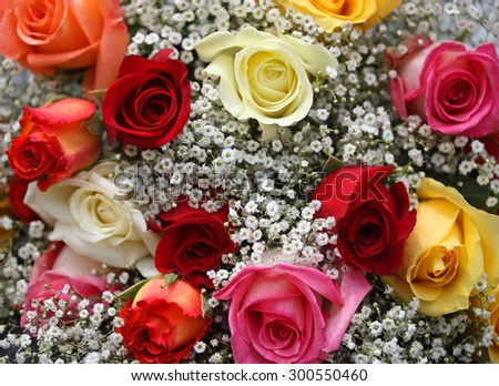 Bouquet of Colorful Roses - stock photo