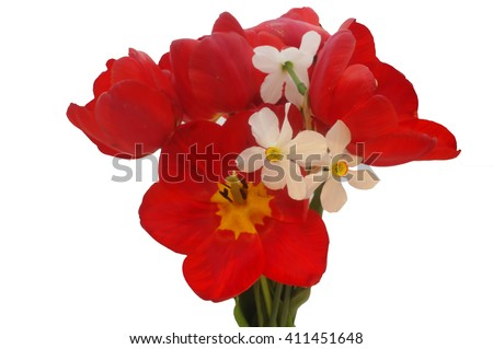 bouquet of colorful spring flowers of tulips and narcissus on a pure white background. - stock photo
