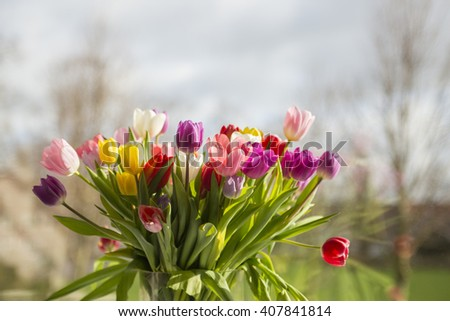 Bouquet of colorful tulips in a vase in the sun - stock photo