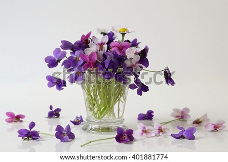 Bouquet of colorful viola flowers in a vase. Flower decoration with wood dog violet flowers. Romantic floral still life with posy of spring violets flowers. - stock photo