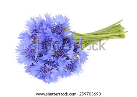 Bouquet of Cornflowers Isolated on White Background - stock photo