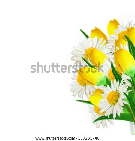 Bouquet of daisies and yellow tulips on the white background - stock photo