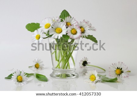 Bouquet of daisies flowers in a vase. Floral still life with bouquet of daisy flowers. Fine art flower photography. - stock photo