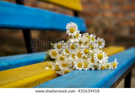 Bouquet of daisies on the bench, background - stock photo