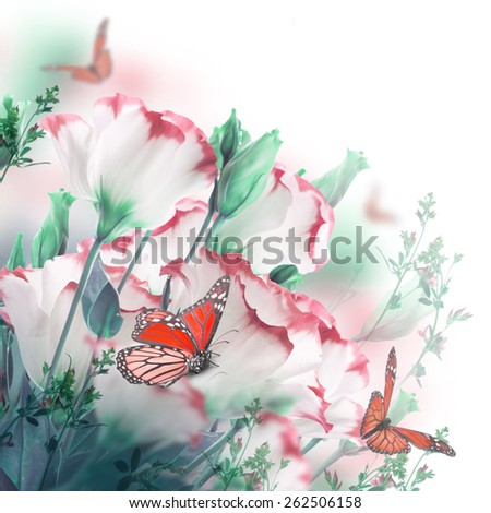 Bouquet of delicate roses and butterfly, floral background - stock photo