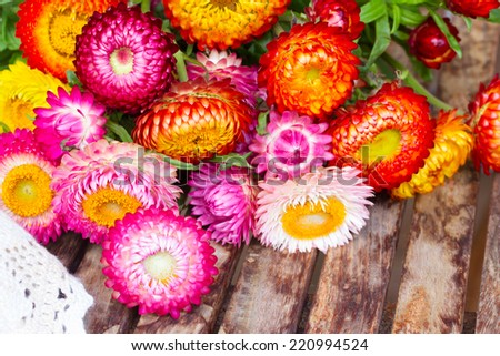 Bouquet of Everlasting flowers bouquet  on wooden table - stock photo