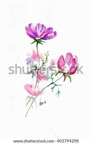 "Bouquet of flowers, Watercolor painting. Water color flowers on white paper. A summer and spring bouquet for your card, a congratulation, the invitation. Album ""Summer and spring watercolor flowers"""