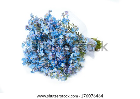 bouquet of  Forget-me-not flowers  - stock photo