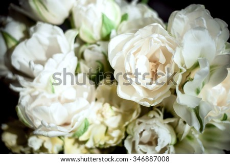bouquet of fresh blooming peonies flowers - stock photo