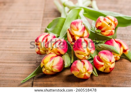 Bouquet of fresh pink and yellow tulips on a wooden table - stock photo