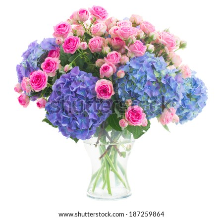 bouquet  of fresh pink roses and blue hortenzia flowers  in glass vase isolated on white background - stock photo