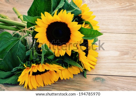 bouquet of fresh sunflowers close up on wooden table - stock photo