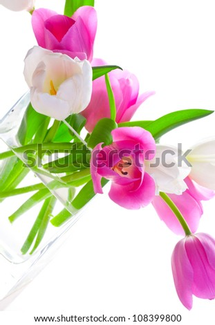 Bouquet of fresh tulips in vase against white background - stock photo