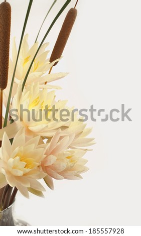 Bouquet of fresh water lilies and cattails in a vase  - stock photo