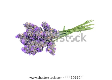 Bouquet of lavender isolated on white