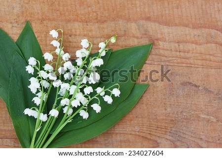 Bouquet of lilies of the valley with water drops on wooden background - stock photo