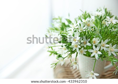 Bouquet of little white flowers on wicker furniture - stock photo
