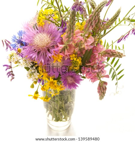 Bouquet of meadow flowers on a white background