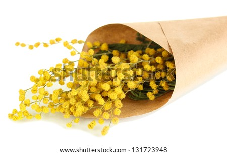 Bouquet of mimosa flowers, isolated on white