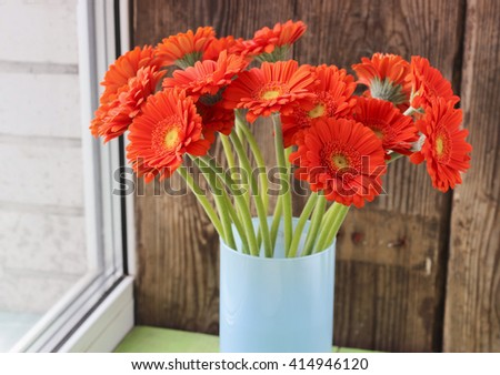 Bouquet of orange gerbera daisies in a vase on a window, natural daylight