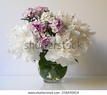 Bouquet of peonies and carnations (sweet william flowers) in a vase. Floral still life with white peony flowers and carnations. - stock photo