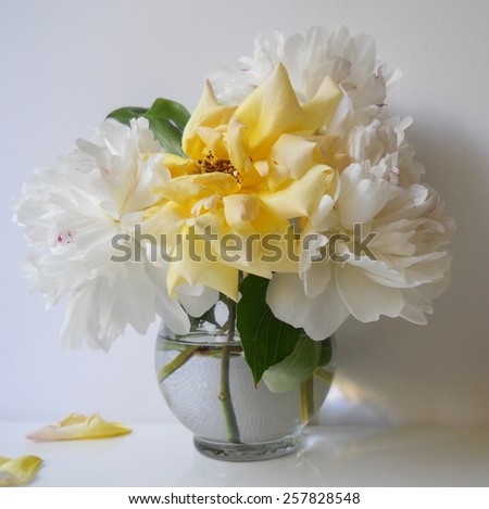 Bouquet of peony flowers and roses in a vase. Floral still life with white peonies and yellow rose. Home decoration. Ornamental plant. - stock photo