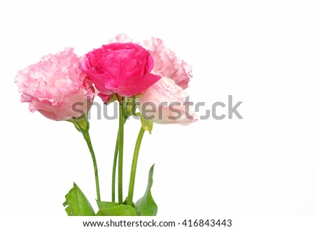Bouquet of Persian buttercup