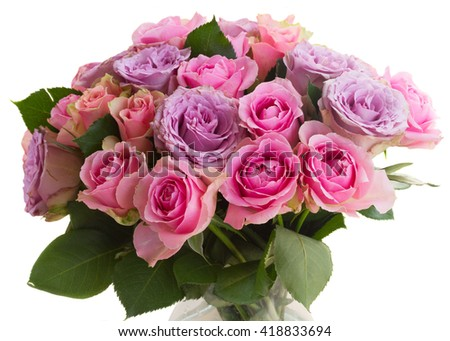 bouquet of pink and violet  fresh blooming roses closeup  isolated on white background