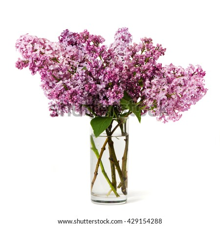 Bouquet of pink lilac in a glass isolated on a white