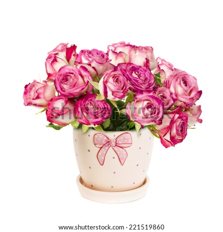 bouquet of pink roses in a beautiful flowerpot  isolated on a white - stock photo