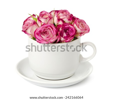 bouquet of pink roses in a white cup  isolated on a white - stock photo