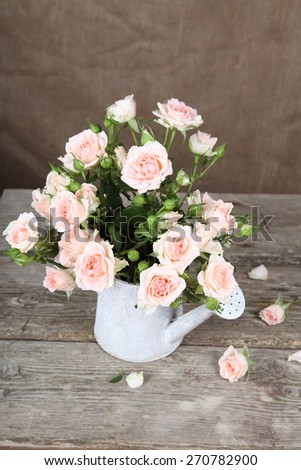 Bouquet of pink roses  in watering can on a wooden background - stock photo