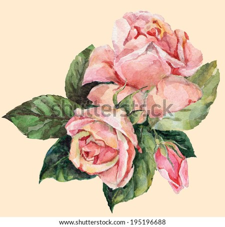 bouquet of pink roses on a pink background - stock photo