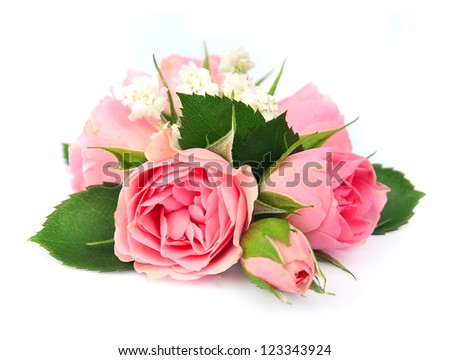 bouquet of pink roses on a white background
