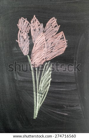 Bouquet of Pink Tulips Drawn on the Black Chalkboard Background. Retro style - stock photo