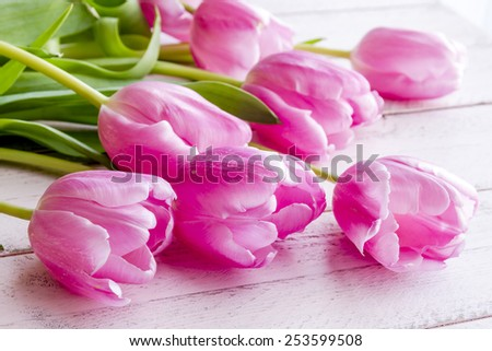 Bouquet of pink tulips laying on antique pink wooden table - stock photo