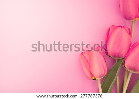 Bouquet of pink tulips with space for greeting message. Mother's Day and spring background concept - stock photo